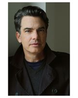 Actor Peter Gallagher