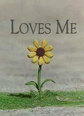 Loves Me... Loves Me Not