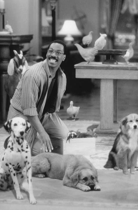 watch doctor dolittle 1998 full movie online or download fast